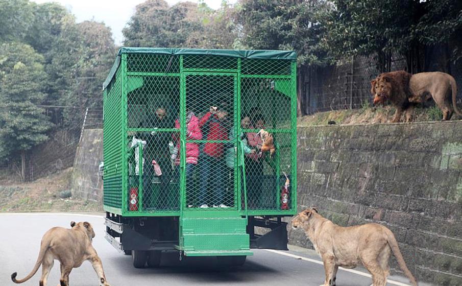 حدائق حيوانات الصين