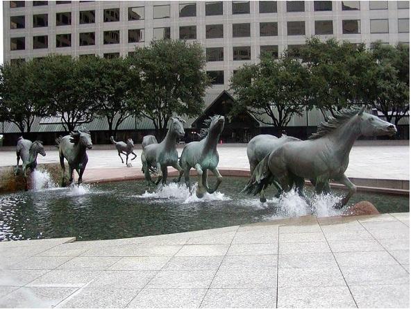 ل Mustangs هي أنواع من الاحصنة الامريكية