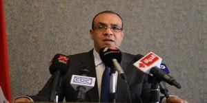السفير بدر عبدالعاطى