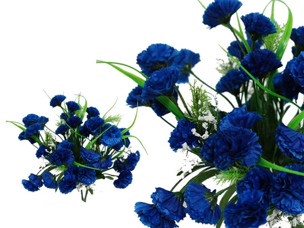 القرنفل الأزرق