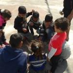 الأطفال يشاهدون الفئرات الميتة داخل وجباتهم الغذائية