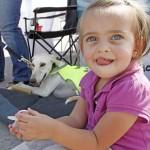 الاطفال والكلاب