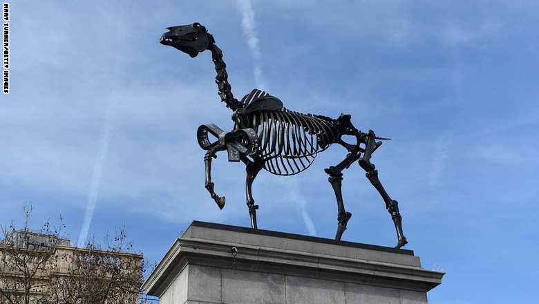 حصان 3