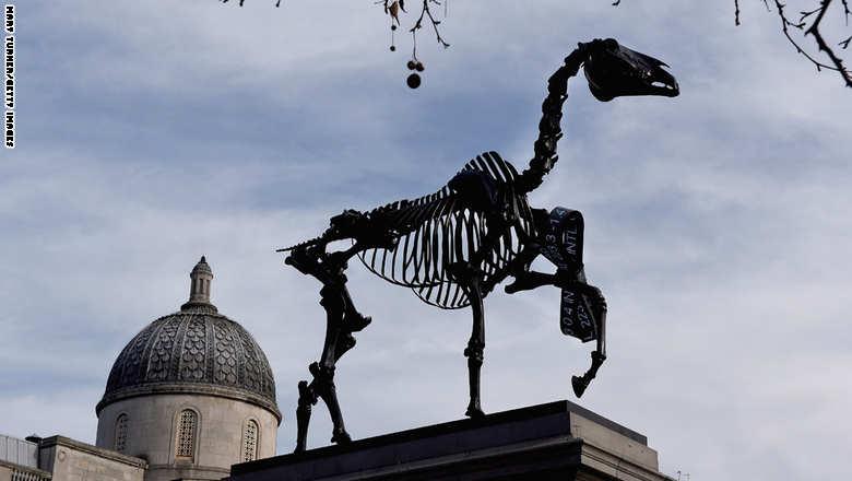 حصان  1