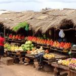 زمبيا