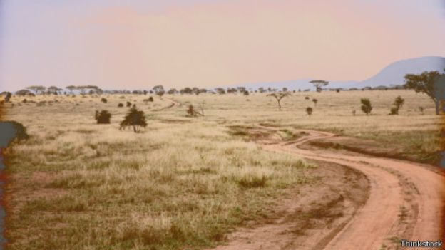 السماد فى تنزانيا