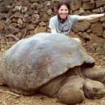 اضخم حيوانات فى العالم