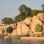 جزيرة الفيلة