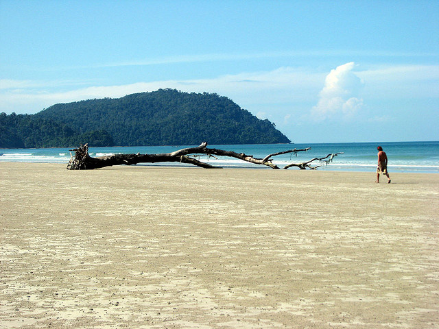 جزيرة تاروتوا