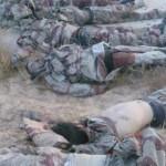 صور الارهابيين القتلى فى هجمات الشيخ زويد