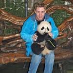 دب الباندا وور