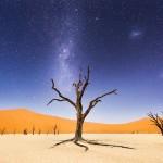 ليلة فى نامبيا