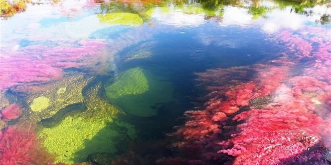 نهر الألوان5