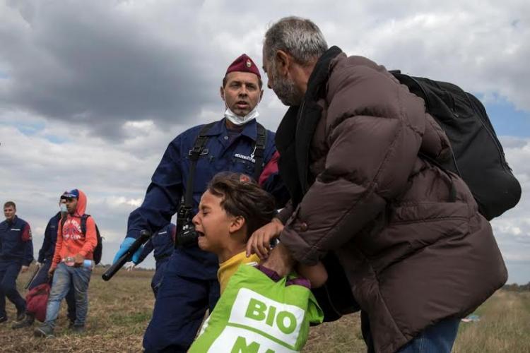 اللاجئيين
