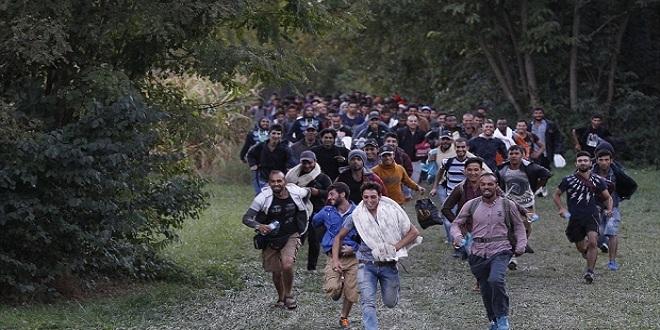 الأمم المتحدة تعلن اختفاء 58 ألف لاجىء سورى من لبنان