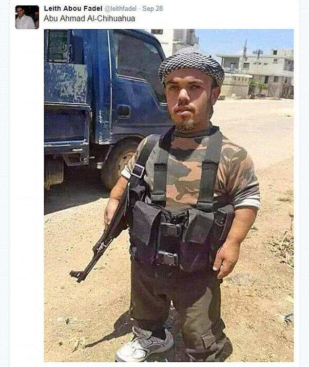 قزم يحارب داعش