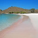 Pink-Sands-Beach-Bahamas-4