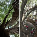 تصميم مدهش حول شجرة