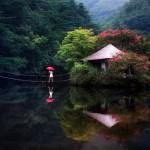 جمال الطبيعة فى كوريا الجنوبية