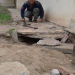 ثعابين وحدة كفر الشيخ الصحية