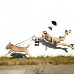 مصور يصور صور غريبة