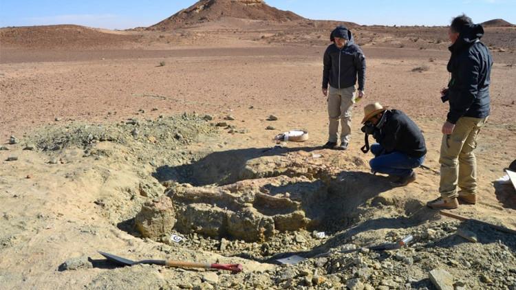 علماء المتحجرات يعثرون على هيكل عظمي لتمساح ضخم في صحراء تونس