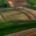 روعة الحقول الاوروبية