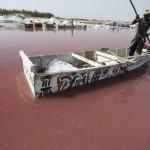 البحيرة الوردية