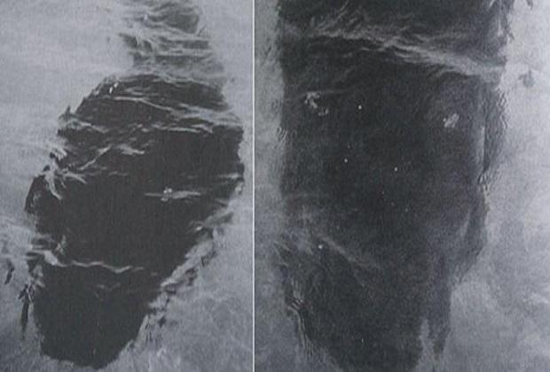 وحش البحر