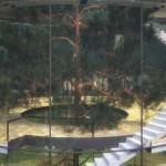 بيت زجاجى داخل غابة