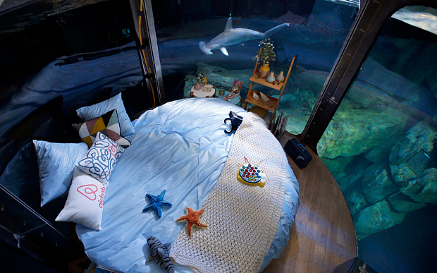 غرفة نوم وسط اسماك القرش