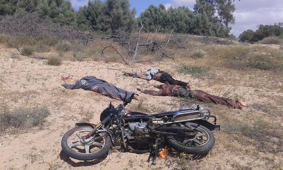 مقتل 3 عناصر ارهابية بسيناء