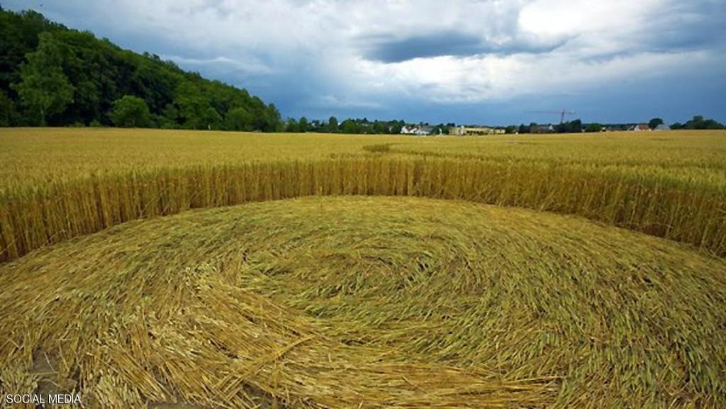 دوائر المحاصيل