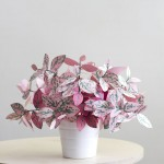 زهور من ورق