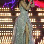 هيفاء وهبى فى حفل ملك جمال لبنان